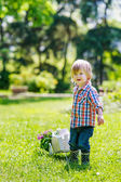 Kid drawing a cart with flowers — Stock Photo