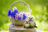 Beautiful flowers in the basket and owls figurine — Stockfoto