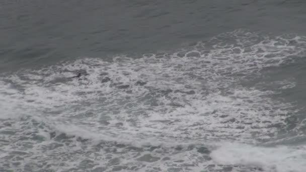 Surfeur 45 — Vidéo