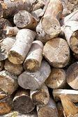 Pila di legna da ardere — Foto Stock