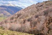 秋天的山尖在欧罗巴 — 图库照片