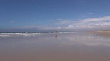 Muž přichází běží na pláži — Stock video