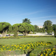 Statue and trees in Madrid park — Stock Photo