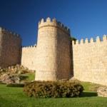 Avila city wall detail — Stock Photo #5764399