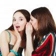 Stock Photo: Two happy young girlfriends make gossip