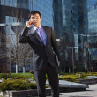 Young businessman standing and talking on mobile phone — Stock Photo