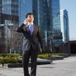 Young businessman standing and talking on mobile phone - Stock Photo