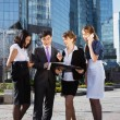 Group of business meeting outdoor — Stock Photo #15838695