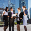 Group of business meeting outdoor — Stock Photo #15838799