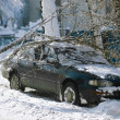 A winter storm buries cars parked along a street - Photo