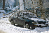 A winter storm buries cars parked along a street — Stock Photo