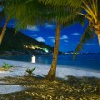 Night over sea beach with clouds and palm tree leaves — Stock Photo