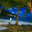Night over sea beach with clouds and palm tree leaves — Stock Photo #20038447