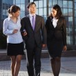 Business walking and talking in the street. — Stock Photo #20666683