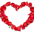 Heart shape from rose petals — Stock Photo
