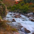 Mountain river on autumn — Stockfoto