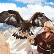 Stock Photo: NURA, KAZAKHSTAN - FEBRUARY 23: Eagle on man's hand in Nurnear