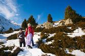 家庭 (有两个孩子的母亲) 冬天山上散步 — 图库照片