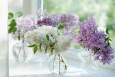 Violet lilac flowers bunch in vase on the window — Stock fotografie