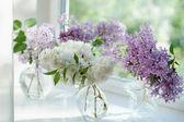 Violet lilac flowers bunch in vase on the window — Foto de Stock