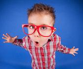 Roligt fem år gammal pojke med uttrycksfulla ansikte, missköter sig begreppet — Stockfoto