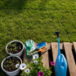 Gardening Tools — Stock Photo #25548717