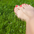 A young woman's legs on green grass. - Stock Photo