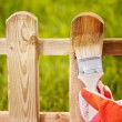 Painting wooden fence - ストック写真