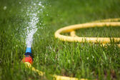 Plastic watering can used to water the grass — Stock Photo