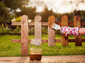 Applying protective varnish to a wooden fence — Stock Photo