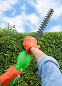 Woman trimming bushes — Stock Photo