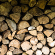 Background fire wood picture — Stock Photo