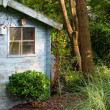 Blue old garden shed — Stock Photo #12490485