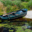 Rowboat in garden pond — Stock Photo #24446245