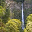 Spring in Multnomah Falls Oregon. — Stock Photo
