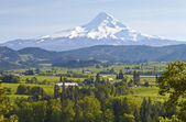 Mt. Hood and Hood River valley. — Stock Photo
