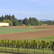 Fertile field in rural Oregon. — Stock Photo