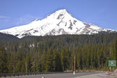 Mt. Hood from Hwy. 26 — Stock fotografie