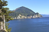 Cape Falcon viewpoint Oregon coast. — Stock Photo