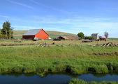 The country farm Eastern Washington state. — Stock Photo