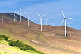 Wind power Eastern Washington. — Stock Photo