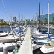 Long Beach marinCalifornia. — Stock Photo #29080773