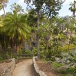 Balboa park gardens San Diego California. — Stock Photo