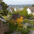 Stock Photo: Fall colors in residential areSeattle WA.