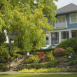 Stock Photo: Large tree and house residential areSeattle WA.