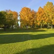 Stock Photo: Public park panoramGresham Oregon.