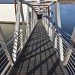 Постер, плакат: Pedestrian steel ladder and state parks Oregon
