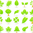 Plants, leaves, trees icon set. — Stock Vector #40869061