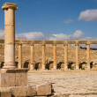 Ruins of ancient Jerash — Stock Photo #14067368