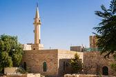 Karak moschee — Stockfoto